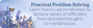 Mindful Practical Problem Solving