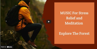 MUSIC For Stress Relief and Meditation - Explore The Forest
