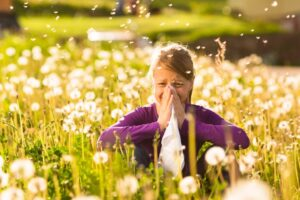 Causes of Hay Fever