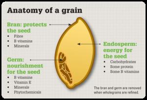Chose Whole Grains over Refined Grains